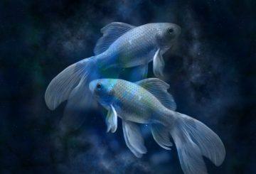 horoscope-639125_1280